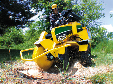 Stump Grinding in massachusetts